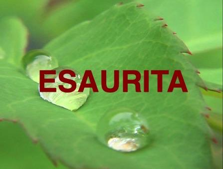 Rosa Esaurita